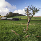 Beautiful agricultural English countryside landscape during earl Stock Photography