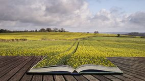 Beautiful agricultural English countryside landscape during earl. Y Spring morning concept coming out of pages in open book Stock Images