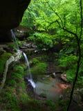 Beautiful Alabama Scenery Royalty Free Stock Image