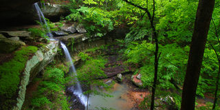 Beautiful Alabama Scenery. Beautiful waterfall flows into a deep canyon in the woodland of northern Alabama Stock Images