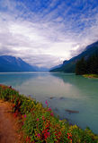 Beautiful Alaskan Bay Stock Images