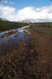 Beautiful Alaskan River Valley to Mountains Stock Photo
