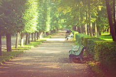 Beautiful alley with bench in the park Stock Photos