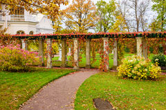 Beautiful alley. In a country house in autumn, Saint-Petersburg, Russia Royalty Free Stock Image