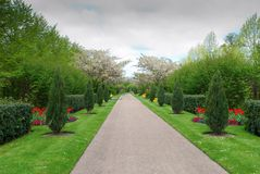 Beautiful alley in the Park with exotic plants Royalty Free Stock Image