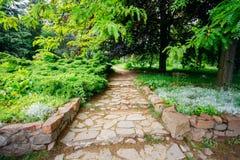 Beautiful Alley In Park. Garden Landscaping Design Stock Photos