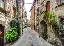 Beautiful alleyway in the historic town of Vitorchiano, Lazio, Italy. Beautiful view of old traditional houses and idyllic alleyway in the historic town of royalty free stock photography