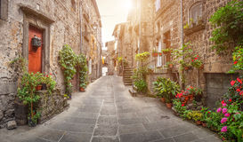 Beautiful alleyway in the historic town of Vitorchiano, Lazio, Italy. Beautiful view of scenic narrow alley with historic traditional houses and cobbled street royalty free stock photo