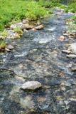 Beautiful Alpine brook in Berchtesgaden National Park, Bavaria, Germany Stock Photo