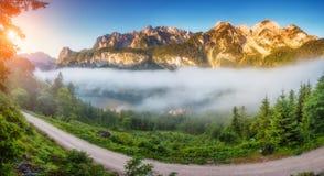 Beautiful alpine lake Royalty Free Stock Photography