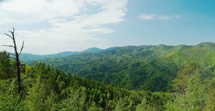 Beautiful alpine landscape with green forested mountains Royalty Free Stock Photography