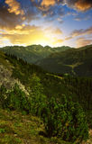 Beautiful alpine landscape at sunset. Royalty Free Stock Photography