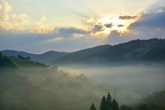 The Beautiful alpine meadow with green grass. sunrise. landscape on wild transylvania hills. Holbav. Romania. Low key, dark backgr Royalty Free Stock Image