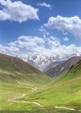 Beautiful Alpine meadows royalty free stock photos