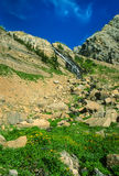 Beautiful Alpine Mountain Waterfall and Wildflowers. Vertical wide angle landscape of a high alpine mountain waterfall with a huge boulder and scree pile below Royalty Free Stock Image