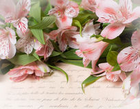 Beautiful Alstroemeria  flowers and Love letter . Vintage retro Valentine's day backgro Royalty Free Stock Photo