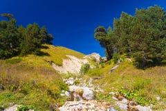Mountain day autumn royalty free stock image
