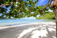 Beautiful amazing incredible tropical beach, white sand, blue sky with clouds and reflection of trees on the sand. Beautiful amazing incredible tropical beach stock images