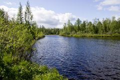 lake in the Siberian taiga stock photos