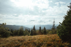 Beautiful amazing landscape of sunny mountains, forest, sky and. Clouds stock photo