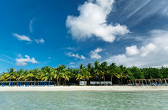 Beautiful amazing view of white sand inviting palm beach from the ocean side Stock Images