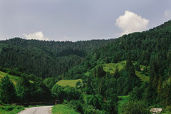 Beautiful amazing view at woods mountains and road under blue sk Royalty Free Stock Images