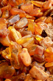 Beautiful amber Royalty Free Stock Photo
