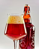Beautiful amber beer Royalty Free Stock Photos