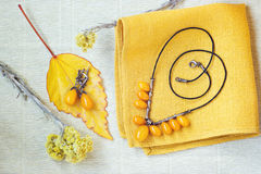 Beautiful amber necklace and earrings. jewelry accessories. Closeup Stock Photos