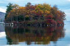 Beautiful american nature landscape. The tree reflection in the Royalty Free Stock Image