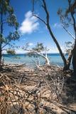 Amity Point beach on Stradbroke Island, Queensland. Beautiful Amity Point beach on Stradbroke Island, Queensland Stock Photography