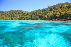 Beautiful andaman sea. Snorkeling point with beautiful coralscape at Surin national park Phuket Thailand Royalty Free Stock Photo