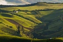 Beautiful andean landscape view from Nono, Ecuador Royalty Free Stock Photos