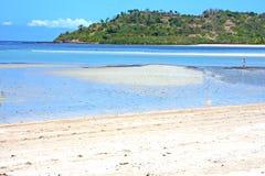 beautiful andilana beach seaweed  indian ocean Royalty Free Stock Photo