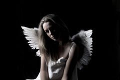 Beautiful angel Stock Photos