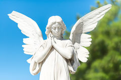 Beautiful angel on a clear blue sky Stock Photography