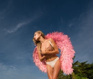 Beautiful angel woman with pink wings Royalty Free Stock Images