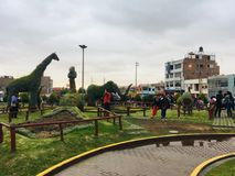 Beautiful Animals in a Park in Tacna. Big animals invading the Central Park in Tacna Peru South America stock photo