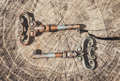 Beautiful antique keys Stock Images