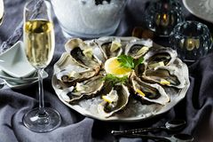Beautiful appetizer oysters two glasses wine champagne. royalty free stock photos