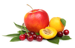 Beautiful apple, apricots and cherries Stock Image