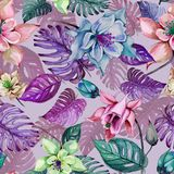 Beautiful aquilegia or columbine flowers and exotic monstera leaves on pink background. Watercolor painting. Tropical seamless floral pattern. Hand drawn royalty free illustration