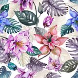 Beautiful aquilegia or columbine flowers and exotic monstera leaves on white background. Watercolor painting. Tropical seamless floral pattern. Hand drawn stock illustration