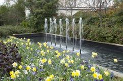 Beautiful arboretum in city Dallas. Spring  in arboretum, Dallas TX USA Stock Photos