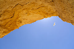 Beautiful arch of a cave. In the sun Stock Image