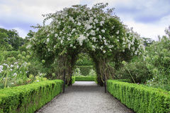 Beautiful arch formed by flowers Royalty Free Stock Images