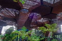 Beautiful architectural woodden structure in a botanical greenhouse in Medellin Stock Image