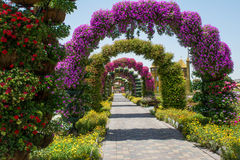 Beautiful archway decorated with flowers Royalty Free Stock Photos