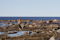Beautiful arctic landscape in summer colours with blue skies and soft clouds. Arviat, Nunavut Canada royalty free stock photos