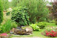 A beautiful arrangement Royalty Free Stock Photos